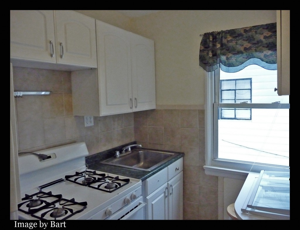 middle village one bedroom apartment for rent