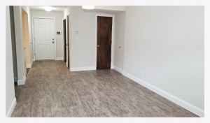 Modern One Bedroom For Rent Middle Village