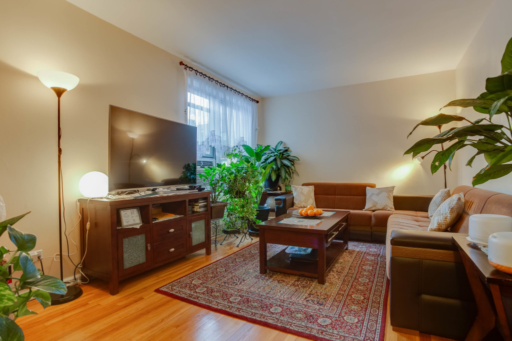 Modern One Bedroom Co-op in Forest Park